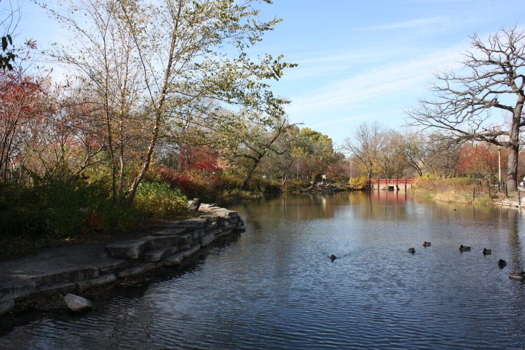 Gompers Park in the fall